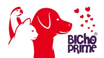 Cuidados especiais para seu pet: Serviços de banho e tosa, acessórios e veterinária. Confira o Super Delivery!